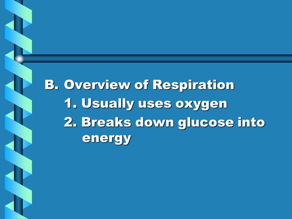 B.Overview of Respiration 1. Usually uses oxygen 2. Breaks down glucose into energy