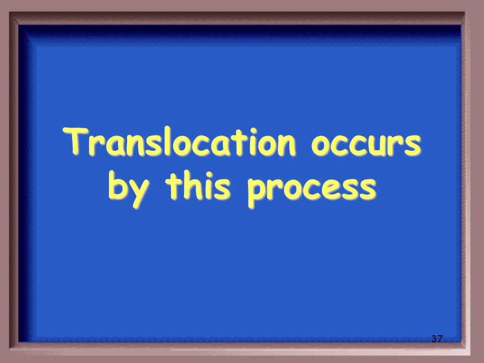 36 What is active transport