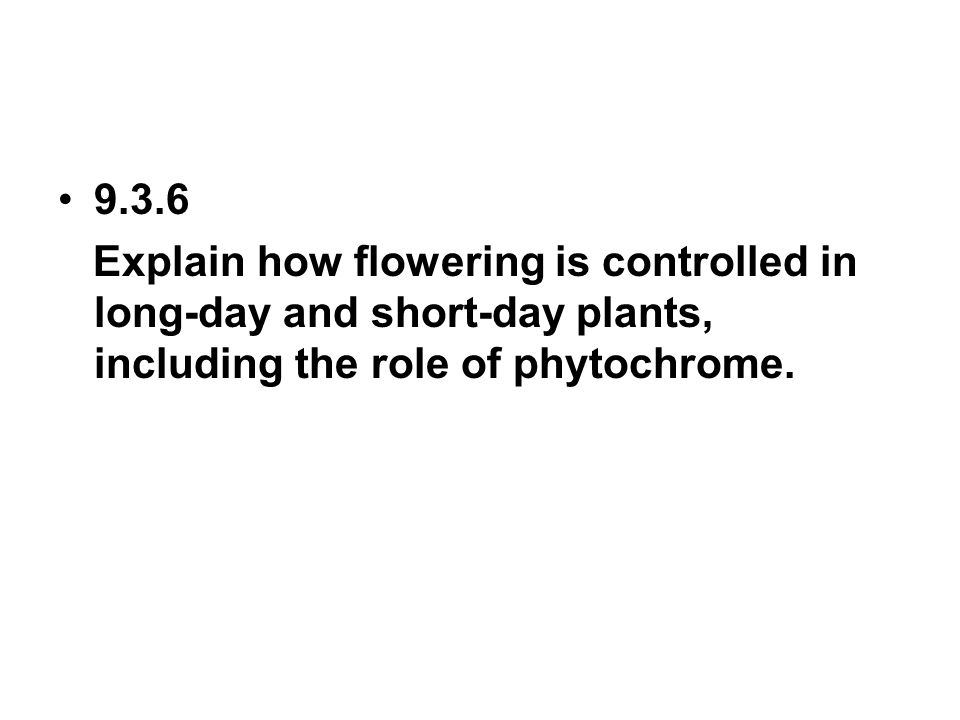 9.3.6 Explain how flowering is controlled in long-day and short-day plants, including the role of phytochrome.