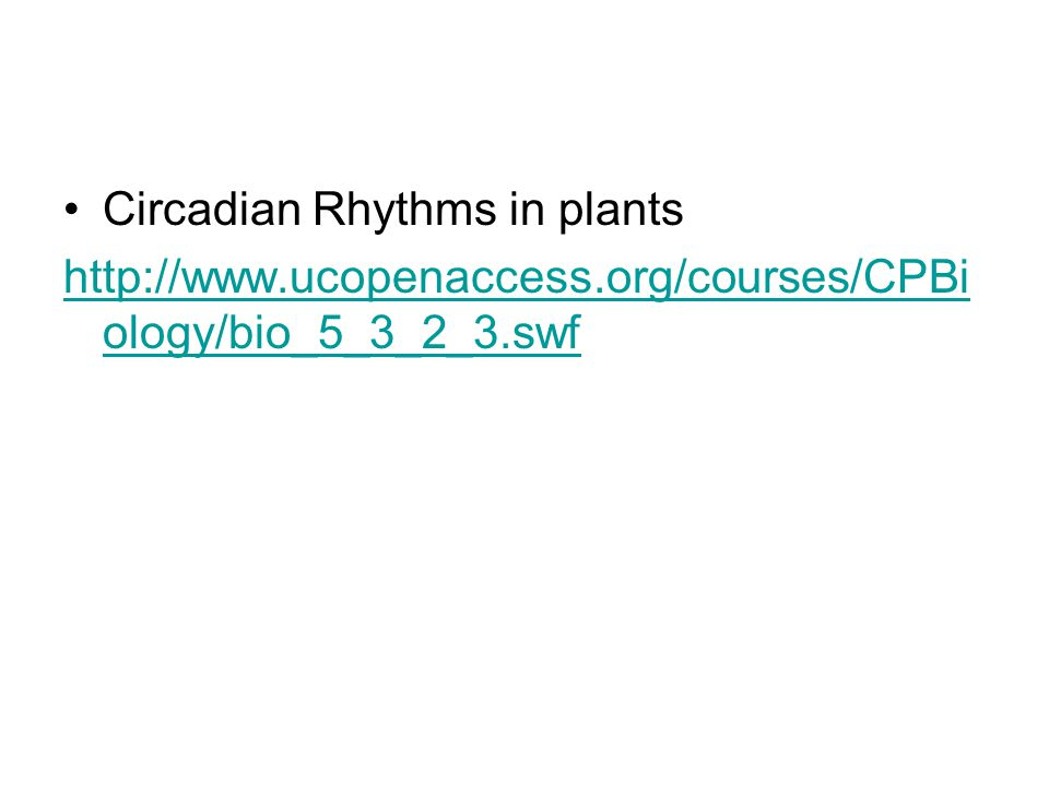Circadian Rhythms in plants http://www.ucopenaccess.org/courses/CPBi ology/bio_5_3_2_3.swf