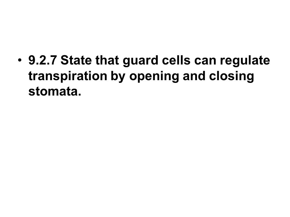9.2.7 State that guard cells can regulate transpiration by opening and closing stomata.