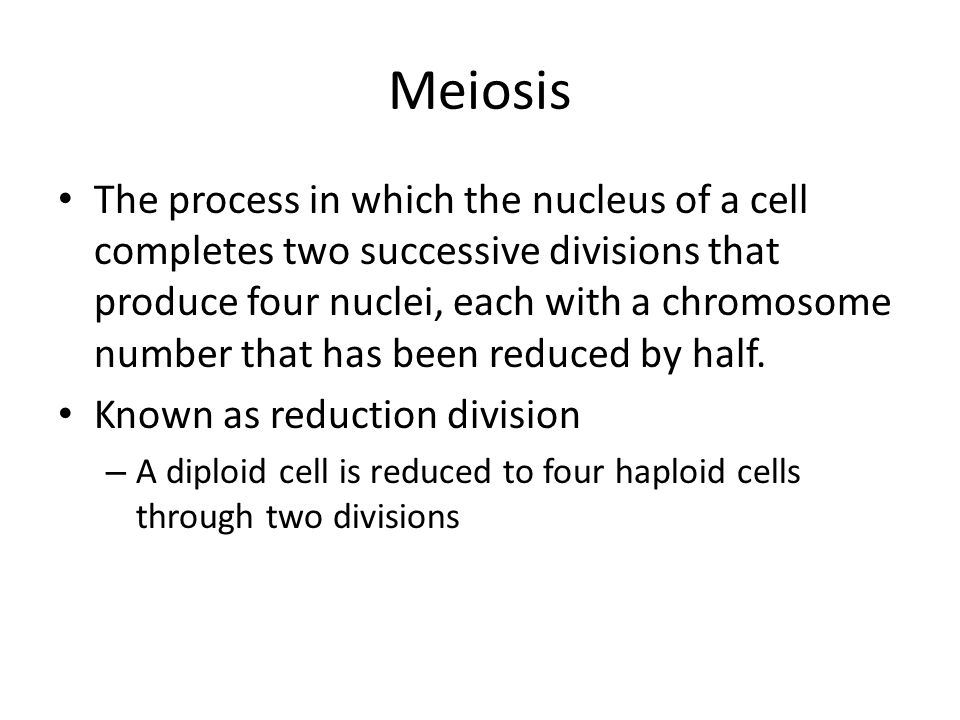 Meiosis The process in which the nucleus of a cell completes two successive divisions that produce four nuclei, each with a chromosome number that has been reduced by half.
