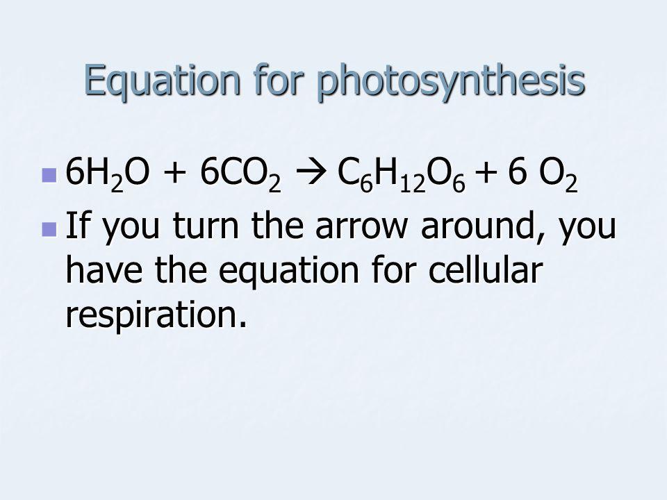 Equation for photosynthesis 6H 2 O + 6CO 2  C 6 H 12 O 6 + 6 O 2 6H 2 O + 6CO 2  C 6 H 12 O 6 + 6 O 2 If you turn the arrow around, you have the equ