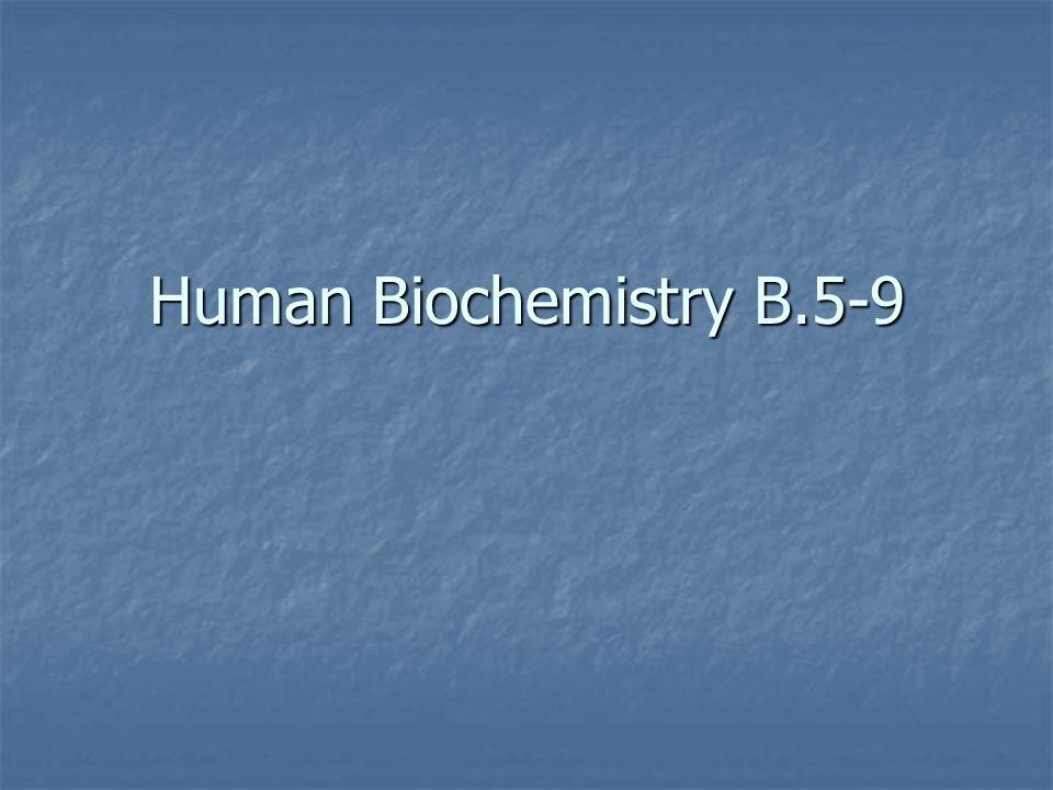 Human Biochemistry B.5-9