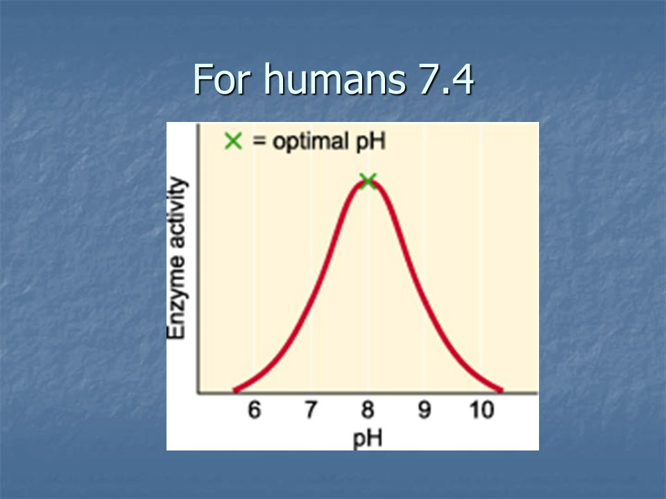 For humans 7.4