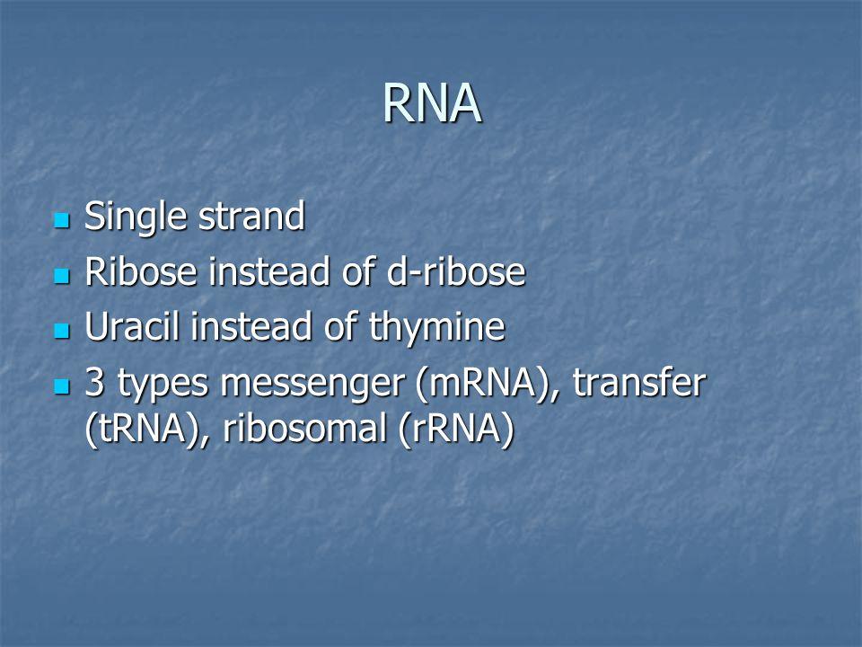 RNA Single strand Single strand Ribose instead of d-ribose Ribose instead of d-ribose Uracil instead of thymine Uracil instead of thymine 3 types messenger (mRNA), transfer (tRNA), ribosomal (rRNA) 3 types messenger (mRNA), transfer (tRNA), ribosomal (rRNA)
