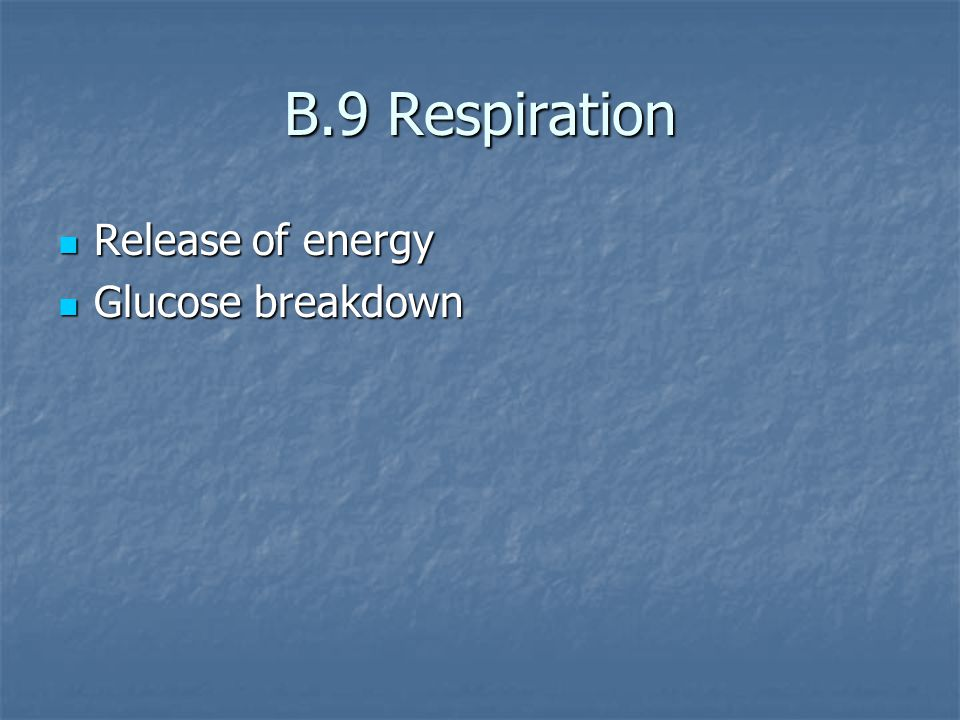 B.9 Respiration Release of energy Release of energy Glucose breakdown Glucose breakdown