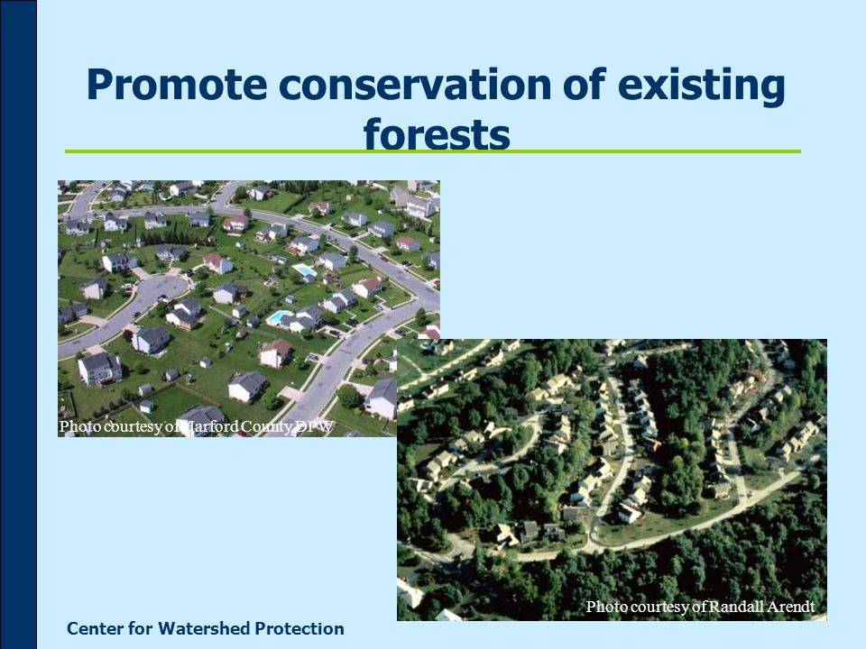 Center for Watershed Protection Promote conservation of existing forests Photo courtesy of Harford County DPW Photo courtesy of Randall Arendt
