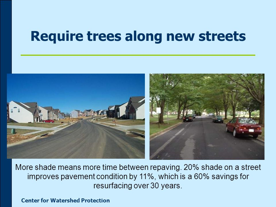 Center for Watershed Protection Require trees along new streets More shade means more time between repaving.