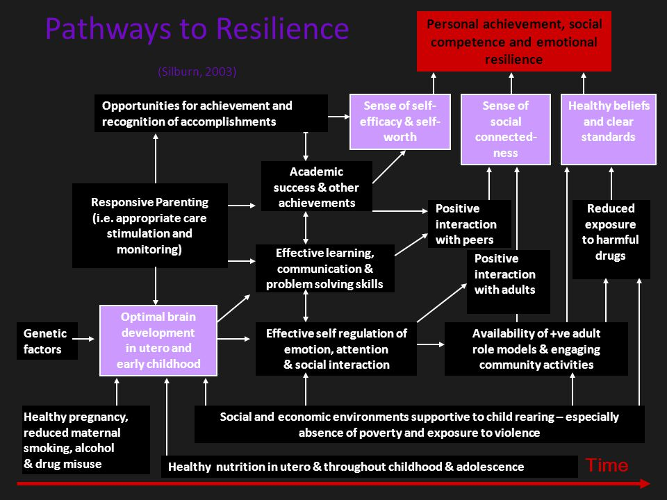 Pathways to Vulnerability (Silburn, 2001) Low SES, maternal infections, drug use & exposure to neurotoxins Genetic factors Adverse parenting & exposure to violence Early neurological (brain) development Self-regulation of emotion, attention & social interaction School & learning difficulties Peer problems Poor problem solving skills Negative thinking patterns Low self- esteem Harmful drug & alcohol use Increasing psychosocial difficulties Acute stress significant loss Depression Suicidal behaviour Time Diet & nutrition Crime & violence Affiliation with deviant peers Availability of harmful drugs Absence of employment
