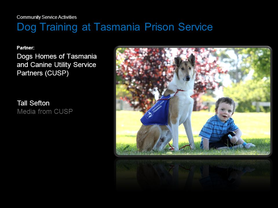 Community Service Activities Dog Training at Tasmania Prison Service Partner: Dogs Homes of Tasmania and Canine Utility Service Partners (CUSP) Tall Sefton Media from CUSP