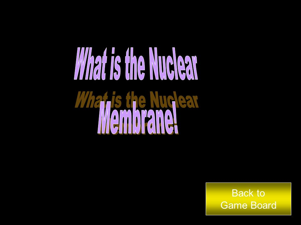 The genetic material found in the nucleus is called… Back to Game Board Answer