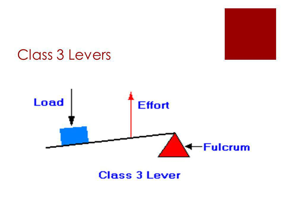 Class 3 Levers