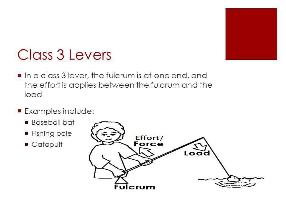  In a class 3 lever, the fulcrum is at one end, and the effort is applies between the fulcrum and the load  Examples include:  Baseball bat  Fishing pole  Catapult