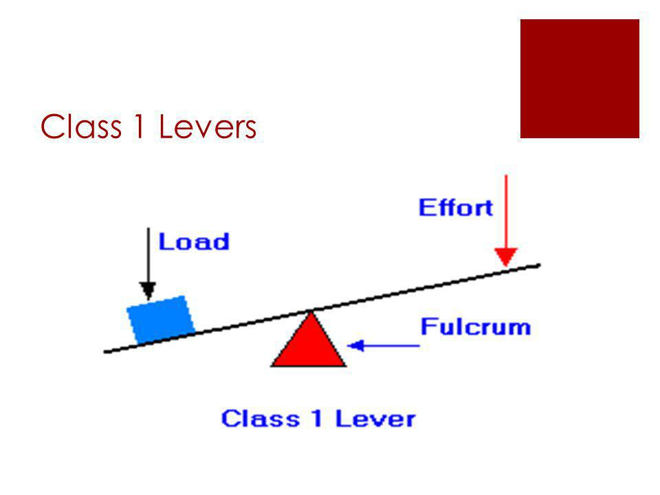  The fulcrum is located somewhere between the effort and the load  Examples include:  The claw of a hammer  crowbar