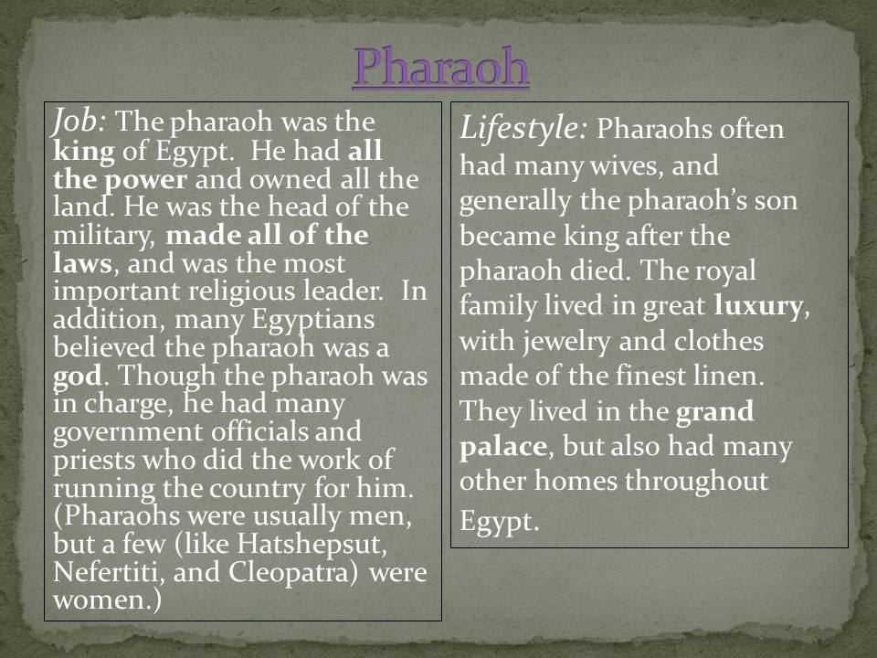 Job: The pharaoh was the king of Egypt. He had all the power and owned all the land. He was the head of the military, made all of the laws, and was th