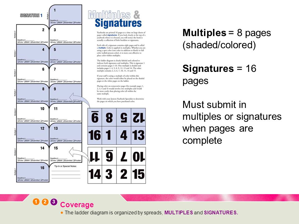 1 3 2 Coverage The ladder diagram is organized by spreads, MULTIPLES and SIGNATURES.