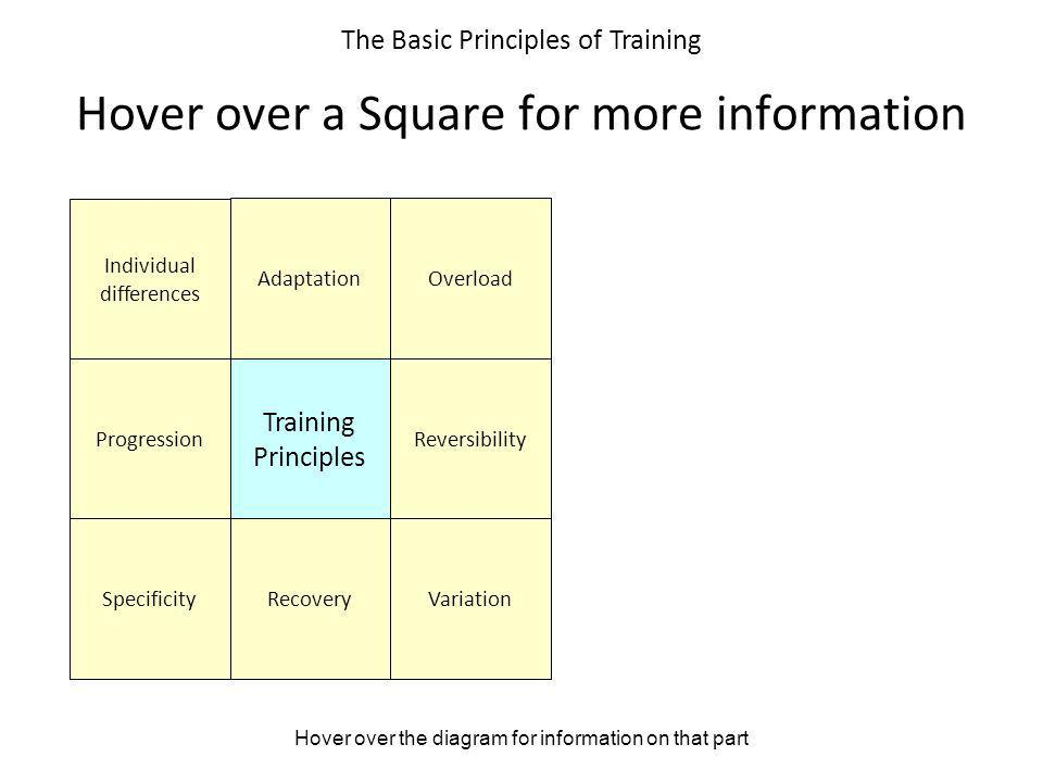 Hover over the diagram for information on that part The Basic Principles of Training Hover over a Square for more information Individual differences A