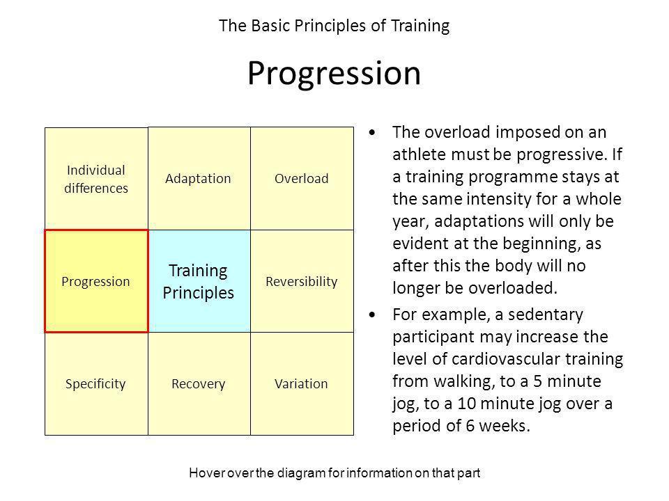 Hover over the diagram for information on that part The Basic Principles of Training Progression The overload imposed on an athlete must be progressiv