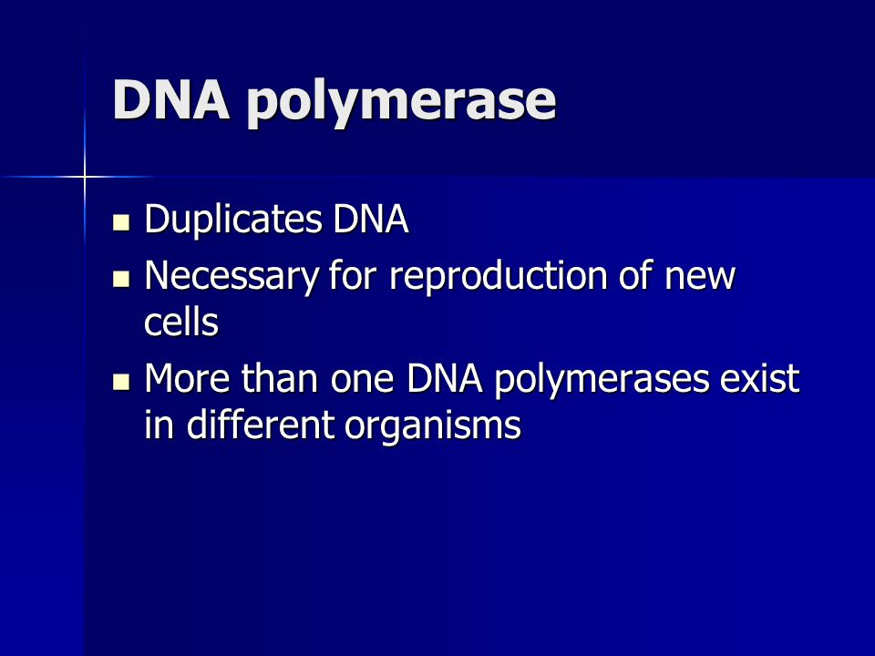 DNA polymerase Duplicates DNA Duplicates DNA Necessary for reproduction of new cells Necessary for reproduction of new cells More than one DNA polymerases exist in different organisms More than one DNA polymerases exist in different organisms