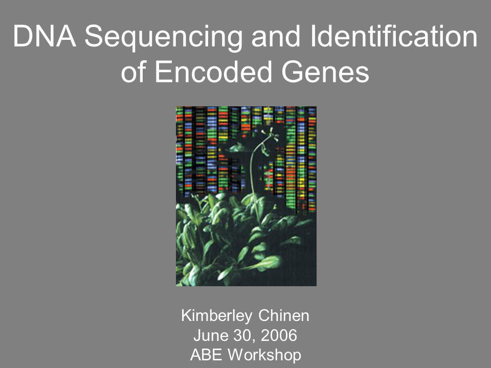 DNA Sequencing and Identification of Encoded Genes Kimberley Chinen June 30, 2006 ABE Workshop
