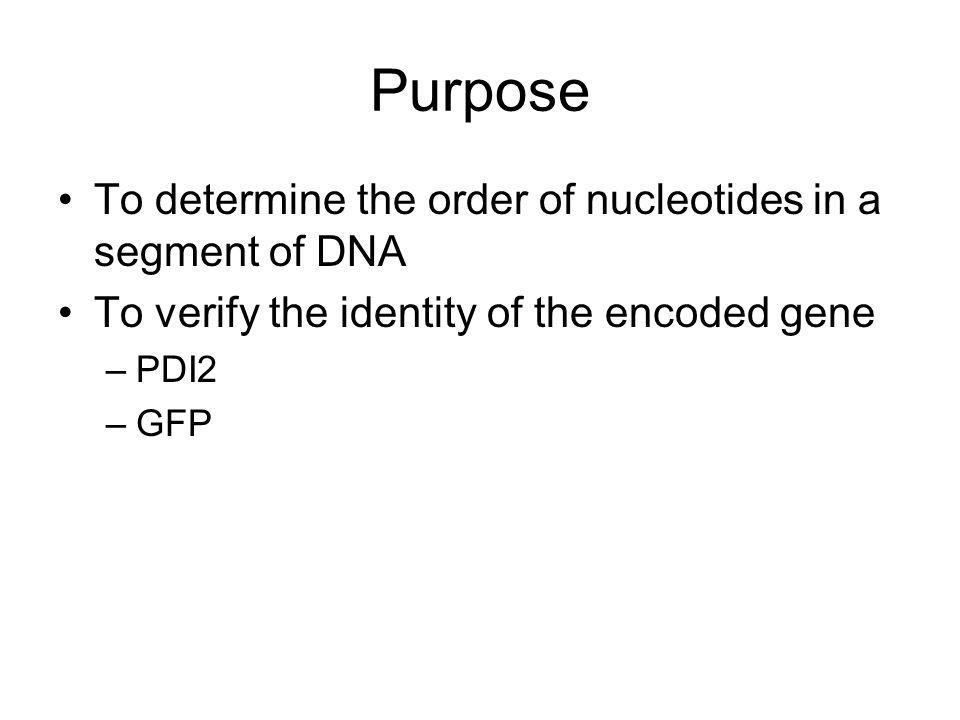 Purpose To determine the order of nucleotides in a segment of DNA To verify the identity of the encoded gene –PDI2 –GFP