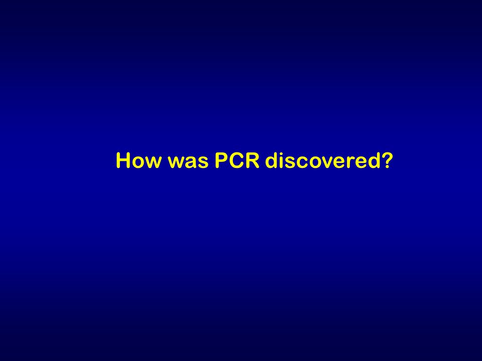 How was PCR discovered?