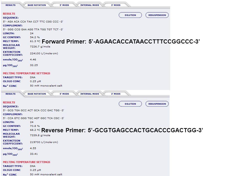 Forward Primer: 5'-AGAACACCATAACCTTTCCGGCCC-3' Reverse Primer: 5'-GCGTGAGCCACTGCACCCGACTGG-3'