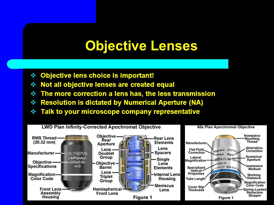Objective Lenses  Objective lens choice is important!  Not all objective lenses are created equal  The more correction a lens has, the less transmi