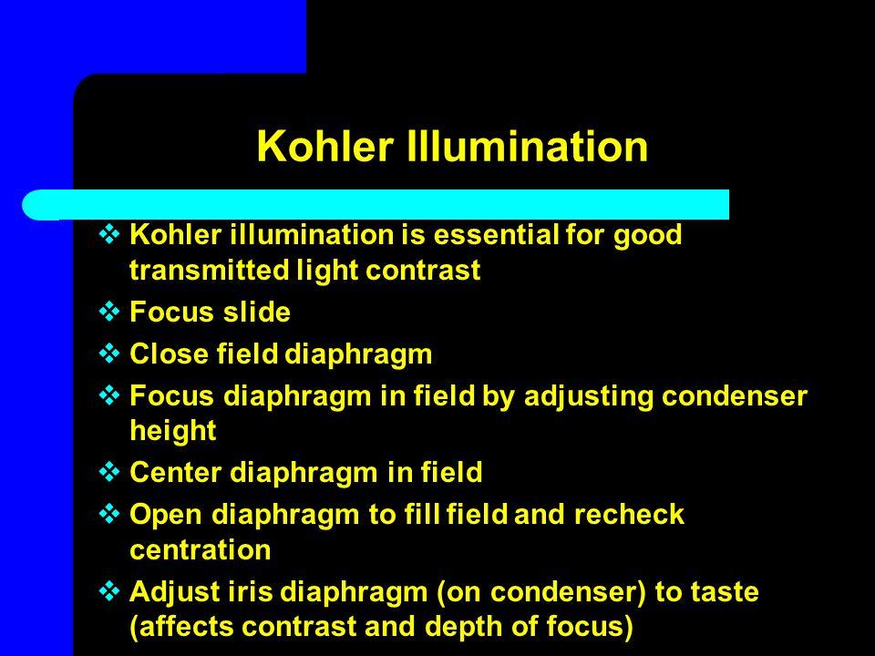 Kohler Illumination  Kohler illumination is essential for good transmitted light contrast  Focus slide  Close field diaphragm  Focus diaphragm in