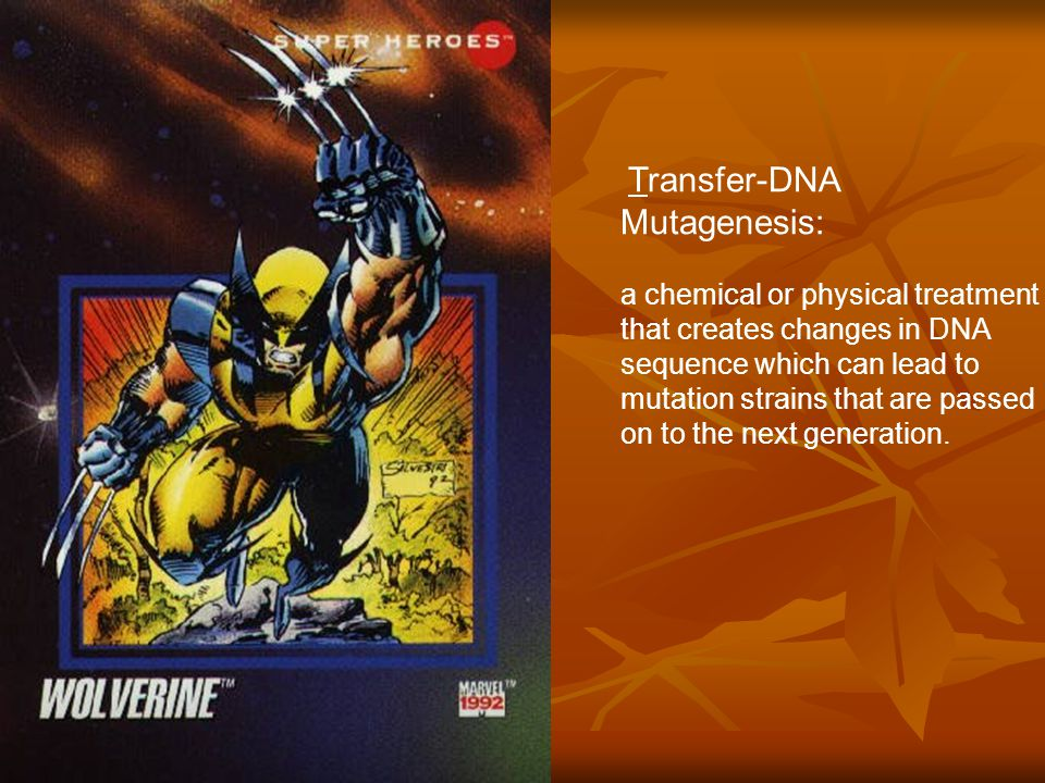 Transfer-DNA Mutagenesis: a chemical or physical treatment that creates changes in DNA sequence which can lead to mutation strains that are passed on to the next generation.