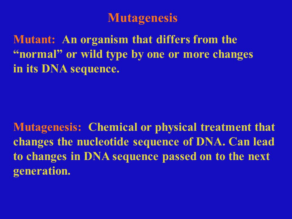 Mutant: An organism that differs from the normal or wild type by one or more changes in its DNA sequence.