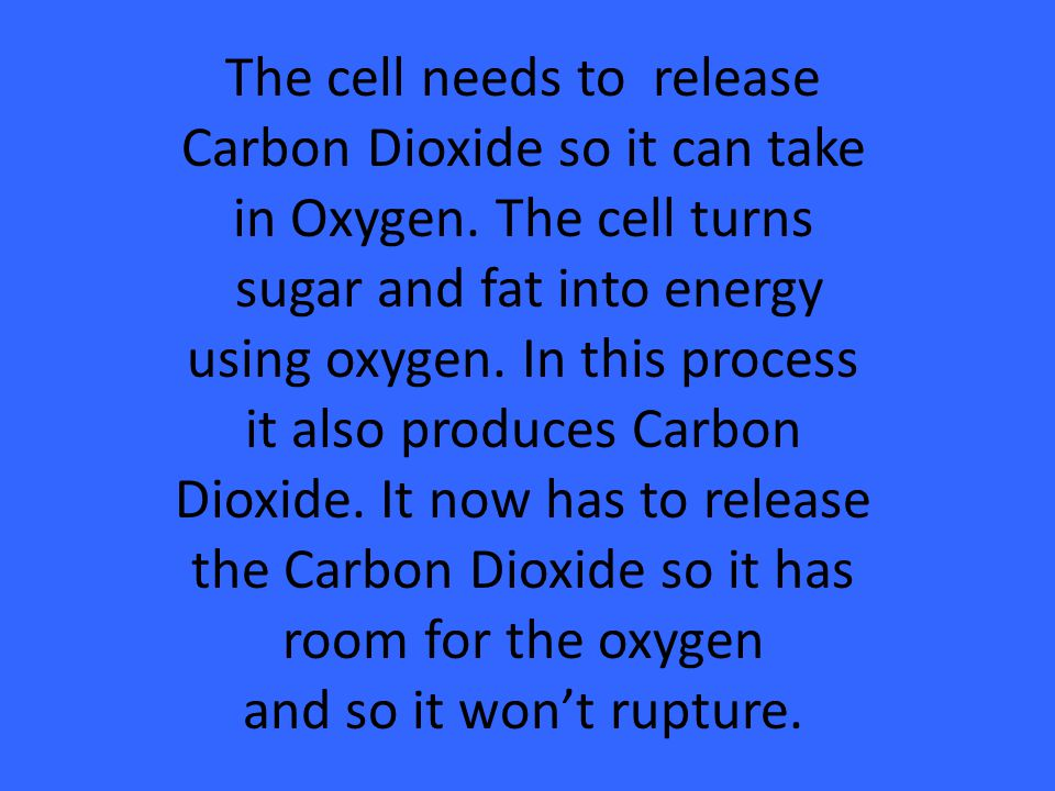 The cell needs to release Carbon Dioxide so it can take in Oxygen. The cell turns sugar and fat into energy using oxygen. In this process it also prod