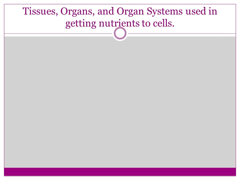 Tissues, Organs, and Organ Systems used in getting nutrients to cells.