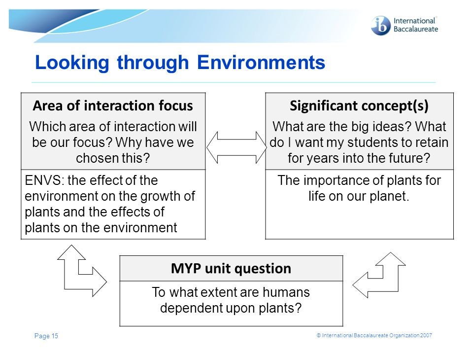 © International Baccalaureate Organization 2007 Looking through Environments Page 15 Area of interaction focus Which area of interaction will be our f