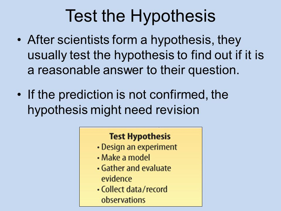 Test the Hypothesis After scientists form a hypothesis, they usually test the hypothesis to find out if it is a reasonable answer to their question. I