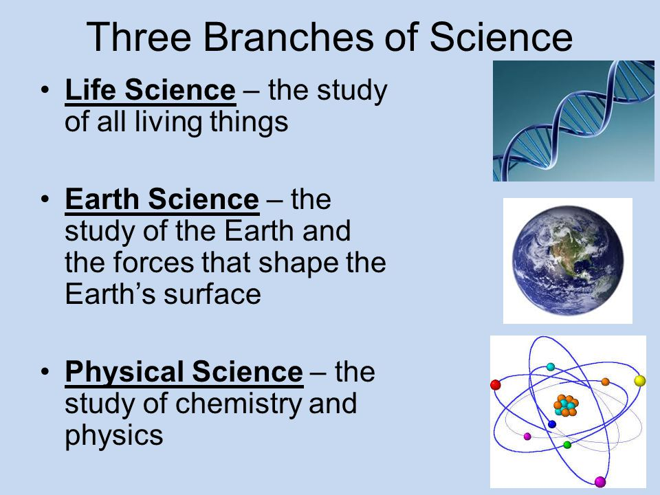 Three Branches of Science Life Science – the study of all living things Earth Science – the study of the Earth and the forces that shape the Earth's s