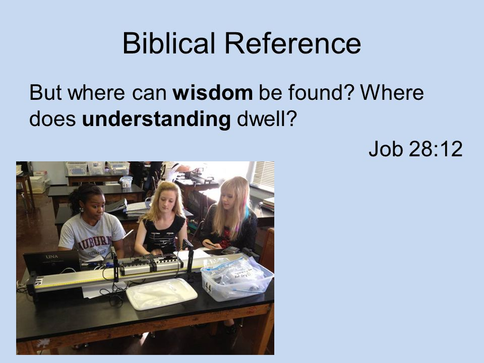 Biblical Reference But where can wisdom be found? Where does understanding dwell? Job 28:12