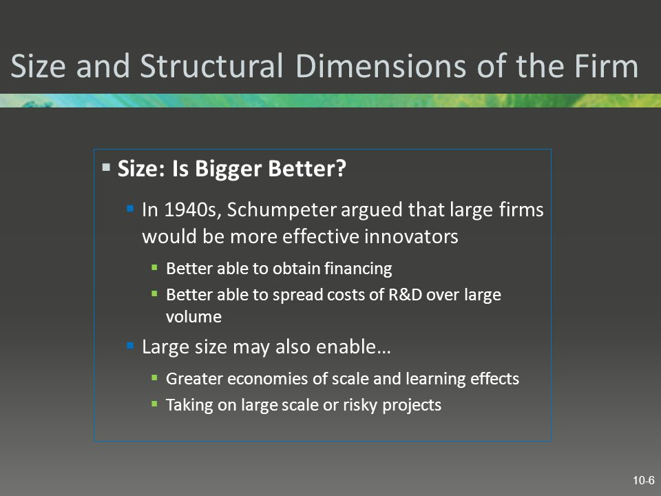 Size and Structural Dimensions of the Firm  Size: Is Bigger Better.