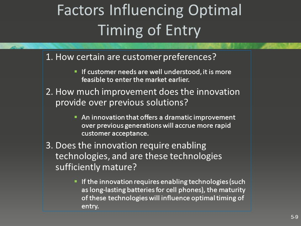 Factors Influencing Optimal Timing of Entry 4.