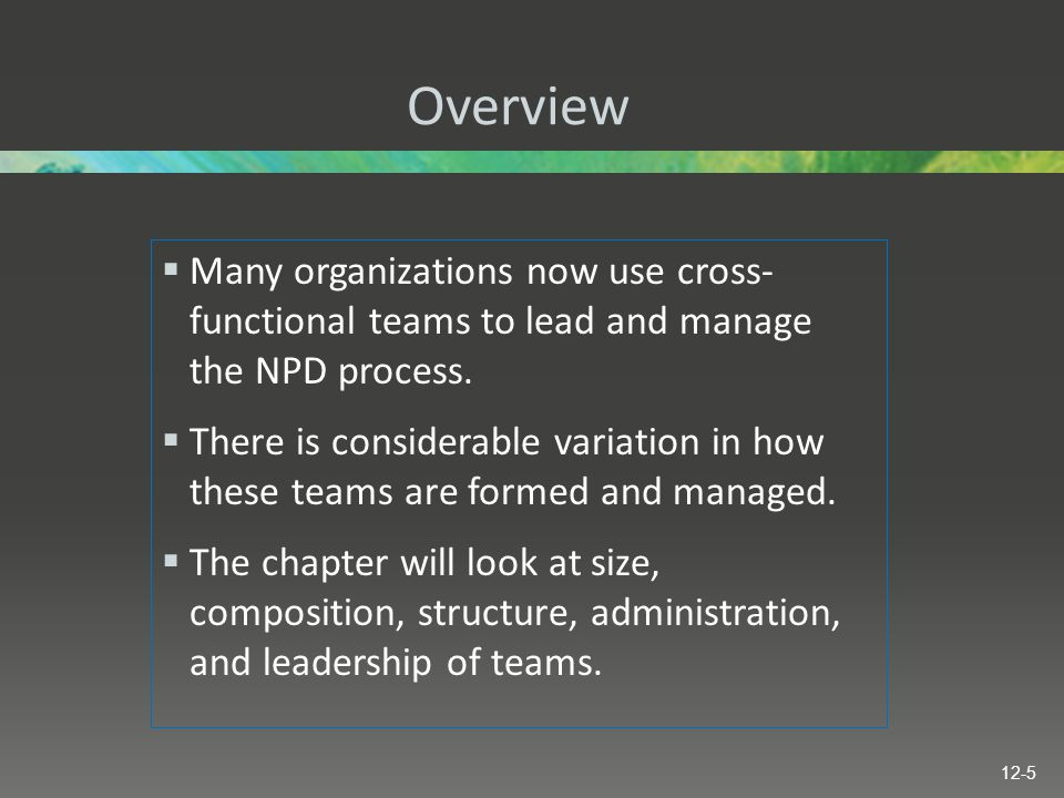 Overview  Many organizations now use cross- functional teams to lead and manage the NPD process.  There is considerable variation in how these teams