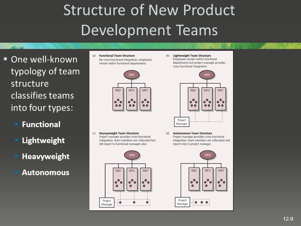 Structure of New Product Development Teams  One well-known typology of team structure classifies teams into four types:  Functional  Lightweight 