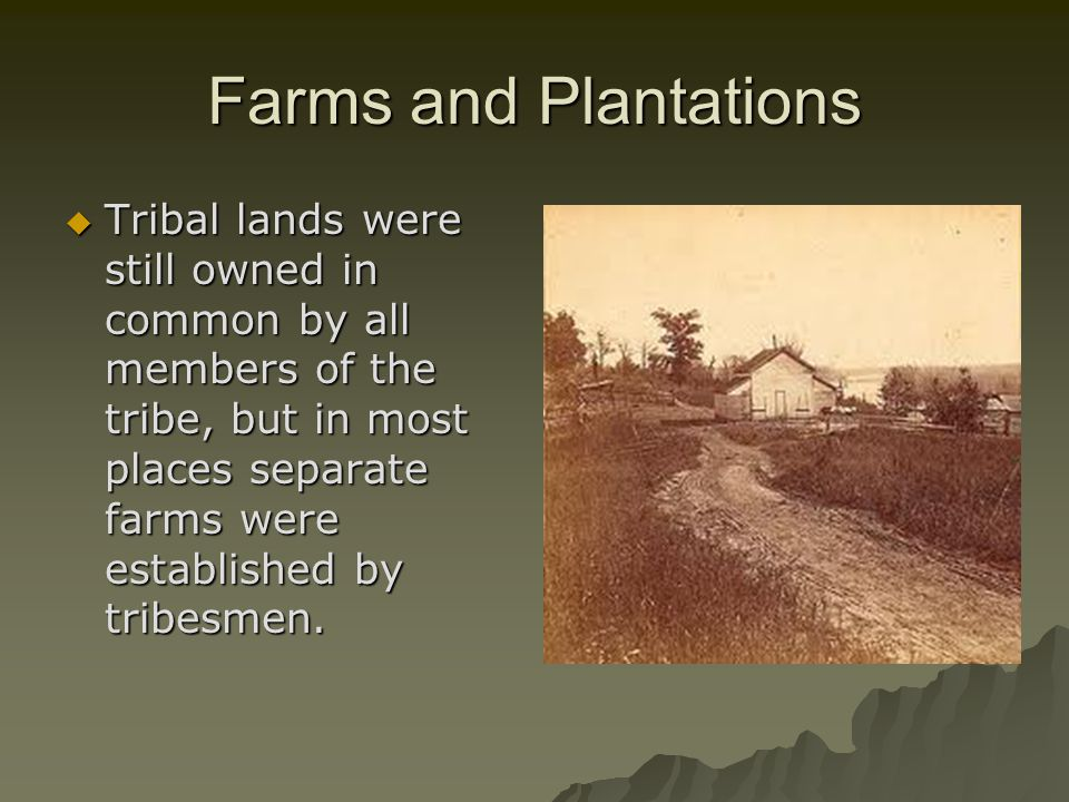 Farms and Plantations  Tribal lands were still owned in common by all members of the tribe, but in most places separate farms were established by tribesmen.
