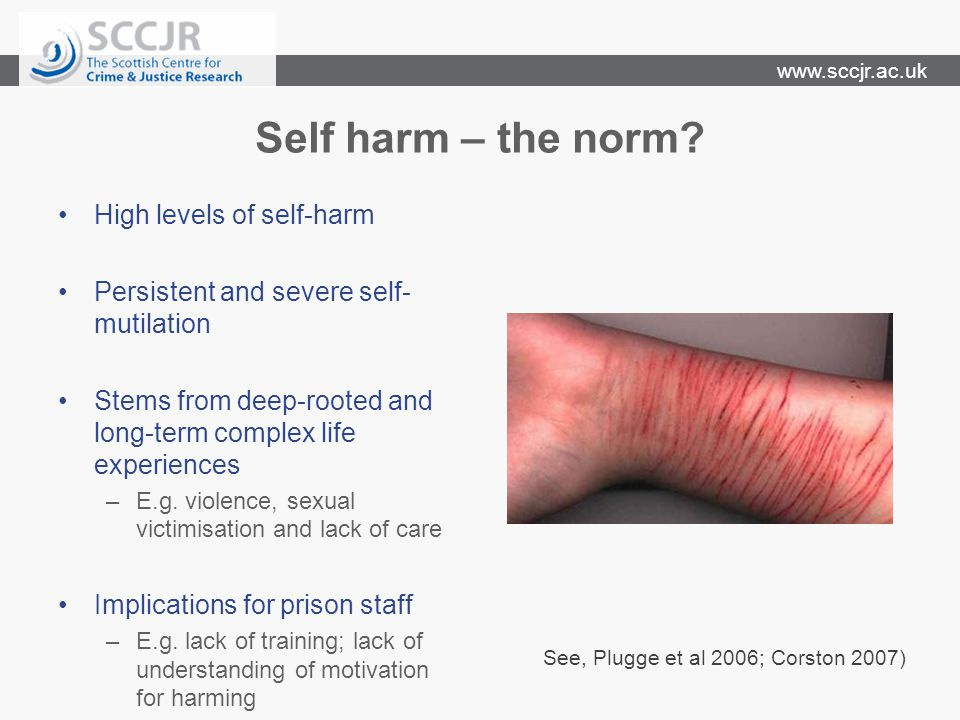 www.sccjr.ac.uk Self harm – the norm.