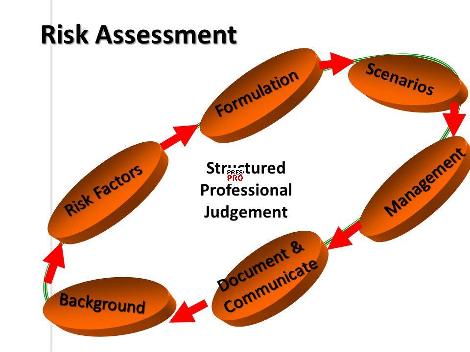 Background Formulation Scenarios Document & Communicate Management Risk Factors Risk Assessment Structured Professional Judgement
