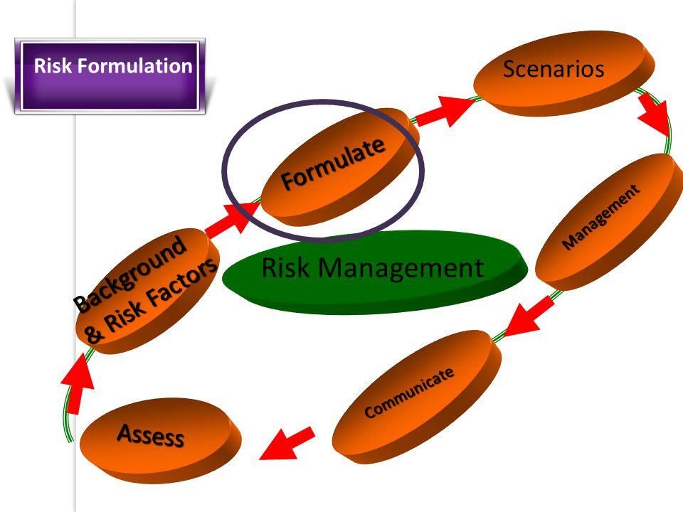 Assess Formulate Scenarios Communicate Risk Management Management Background & Risk Factors Risk Formulation