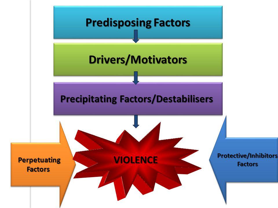 Predisposing Factors Precipitating Factors/Destabilisers Protective/InhibitorsFactorsProtective/InhibitorsFactors PerpetuatingFactorsPerpetuatingFactors Drivers/MotivatorsDrivers/Motivators VIOLENCE