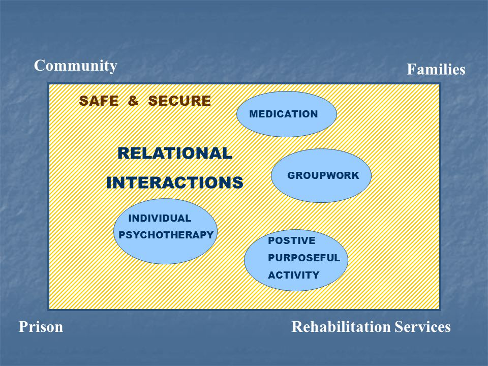 GROUPWORK INDIVIDUAL PSYCHOTHERAPY POSTIVE PURPOSEFUL ACTIVITY SAFE & SECURE RELATIONAL INTERACTIONS Rehabilitation ServicesPrison Families MEDICATION Community
