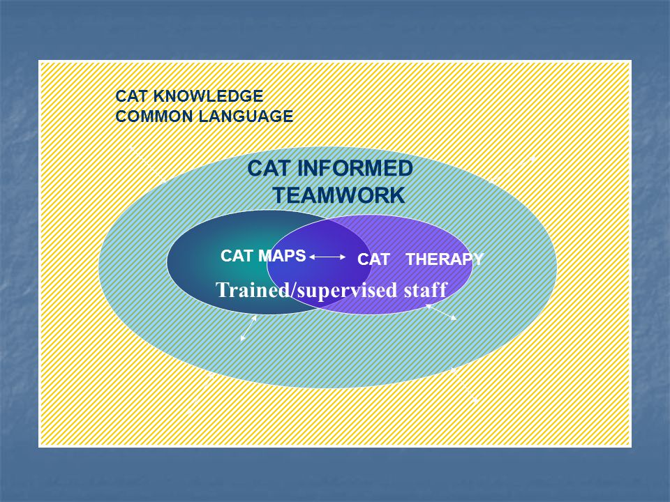 CAT KNOWLEDGE COMMON LANGUAGE CAT INFORMED TEAMWORK CAT THERAPY CAT MAPS Trained/supervised staff