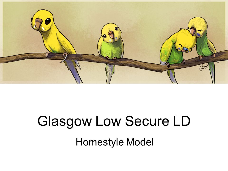 Glasgow Low Secure LD Homestyle Model